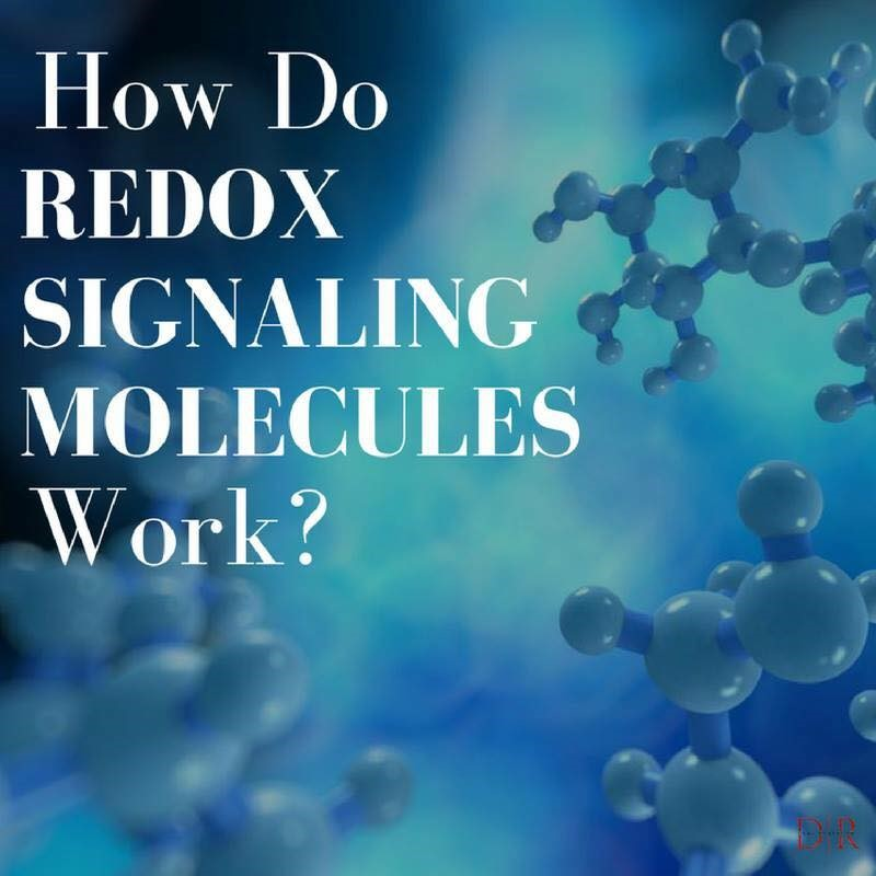 Head2Heart Healing - Daniel Lori Falk - Health & Wellness Coach, how do Redox signaling molecules work?